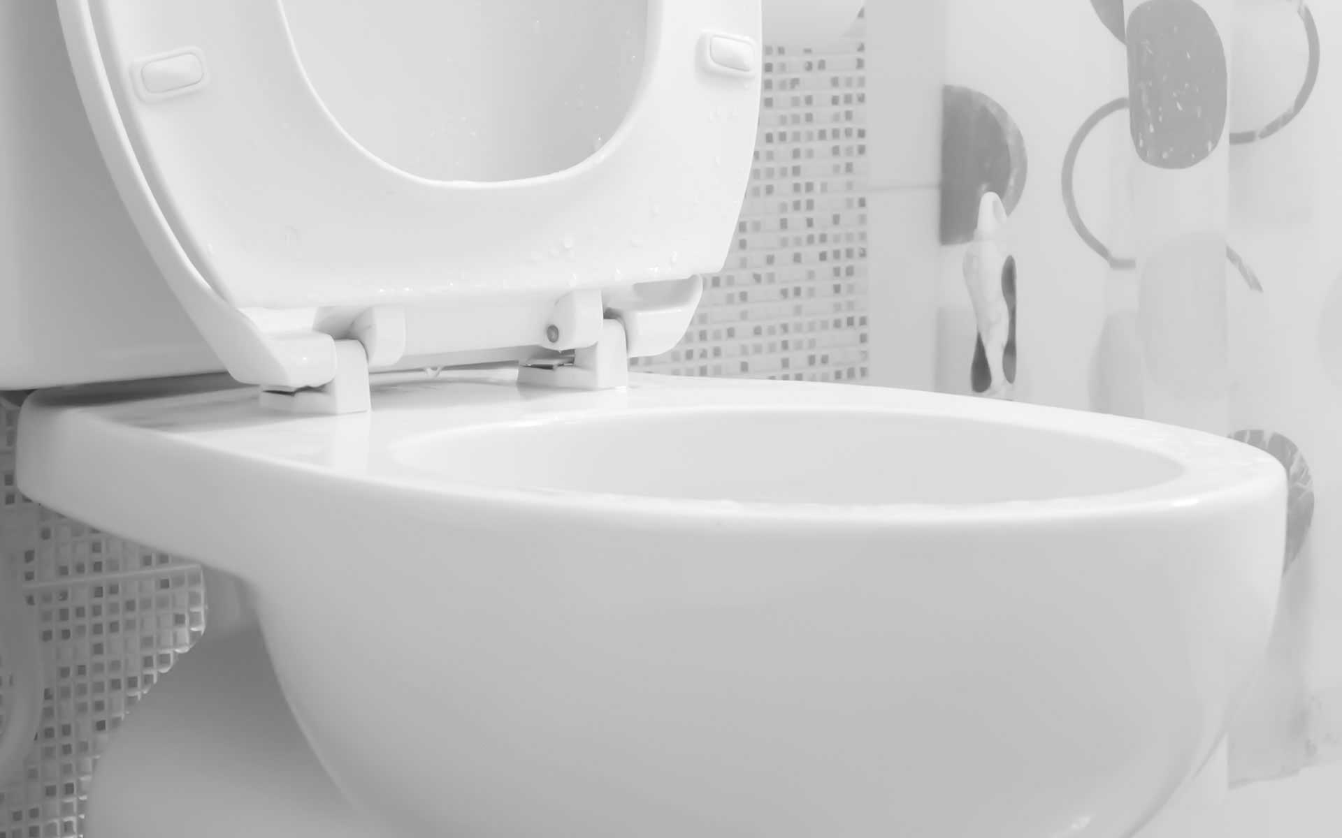 Gaithersburg Toilet Repair